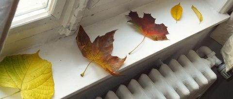 Toamna în casă - Frunze pe pervaz