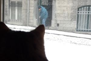 Iarna pe strada mea
