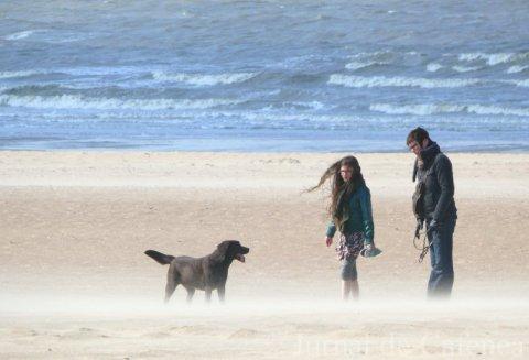 Cu cainele pe plaja