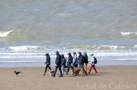 Grup de oameni mergand pe malul marii cu cainii