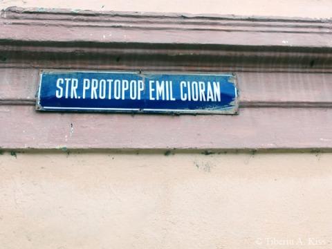 strada-preot-emil-cioran-rasinari-P4130141