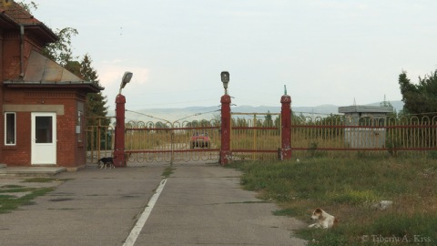 Poarta fabricii Letea Bacau