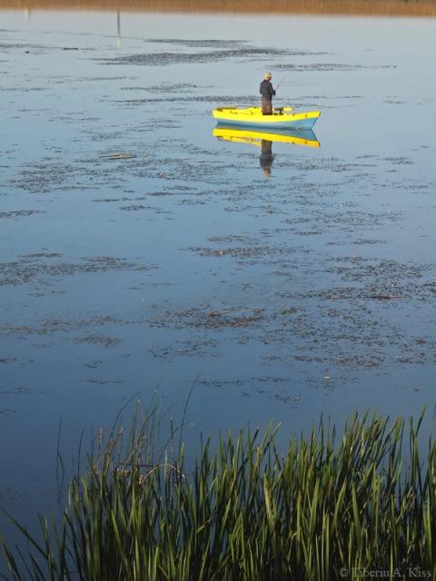 pescar-in-barca-insula-de-agrement-bacau-DSCF5236