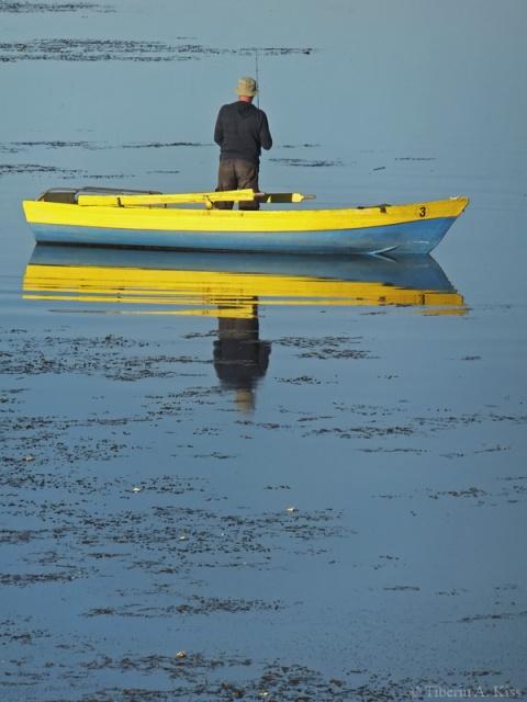 pescar-in-barca-insula-de-agrement-bacau-DSCF5240