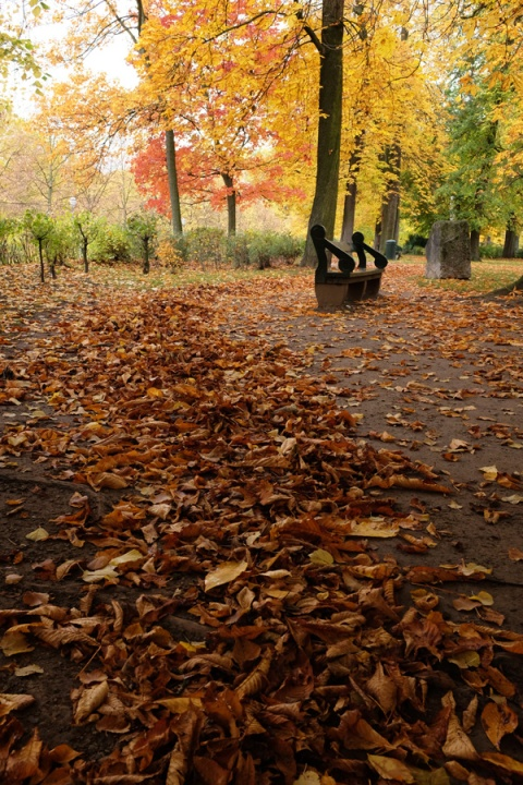 autumn-in-the-parc-bruxelles-2015-02