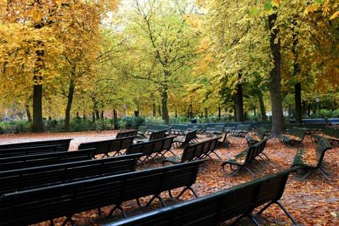 autumn-in-the-parc-bruxelles-2015-03